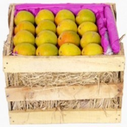 Alphonso Mangoes - Delicious Hapus Mango - Medium Size (6 Dozen)