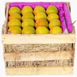 Alphonso Mangoes - Delicious Hapus Mango - Medium Size (5 Dozen)