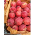 Iran Apples - Delicious Red Iran Apples - Medium Size (1KG)