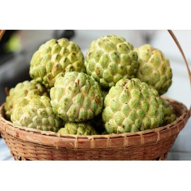 Custard Apple : 3 pcs