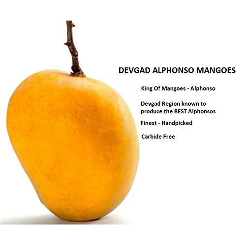 Devgad Alphonso Mango - Medium Size (6 Dozen)