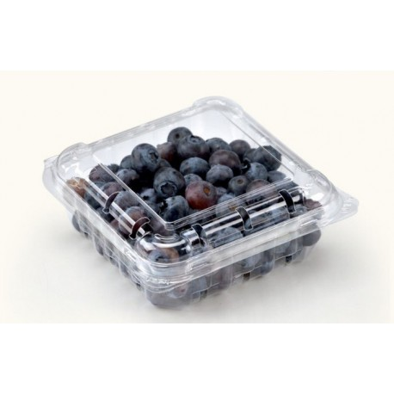 Blueberry (125 gm)